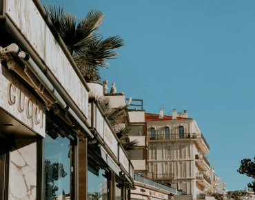 Discover the Boulevard de la Croisette when you take advantage of our reopening